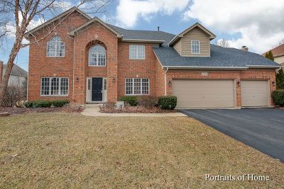 Naperville Single Family Home For Sale: 3108 Mistflower Lane