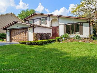 Lisle Single Family Home For Sale: 2350 Barkridge Court
