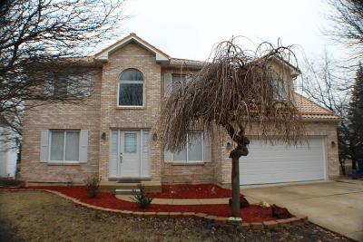 Bolingbrook Single Family Home For Sale: 227 North Vincent Drive