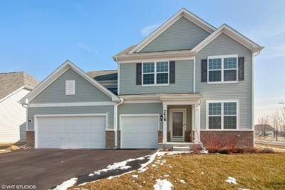 Single Family Home For Sale: 2428 Basin Trail Lane