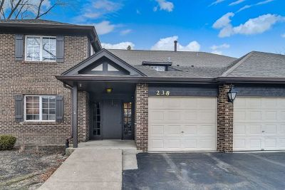 Willowbrook Condo/Townhouse For Sale: 238 Brookside Lane #C