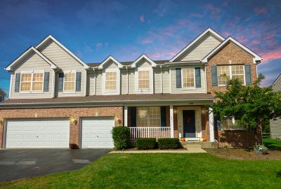 Round Lake Single Family Home For Sale: 2490 West Magnolia Lane