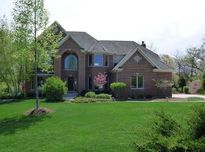 Carpentersville Single Family Home For Sale: 3262 Black Cherry Circle