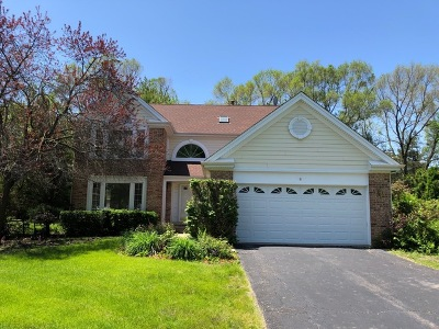 Schaumburg Single Family Home For Sale: 8 Cherrywood Drive