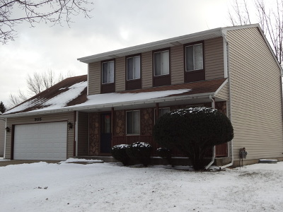 Roselle Single Family Home For Sale: 905 Hunter Drive