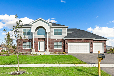 Plainfield Single Family Home For Sale: 25818 West Canyon Boulevard