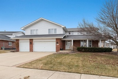 Tinley Park Single Family Home For Sale: 19600 Greenview Place