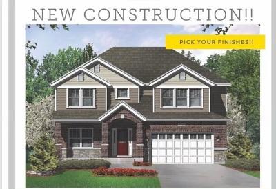 Oak Lawn Single Family Home For Sale: 9973 Elm Circle Drive
