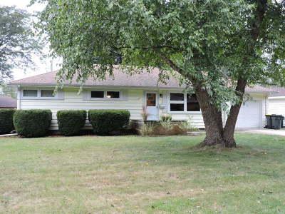 East Dundee Single Family Home For Sale: 117 Howard Avenue