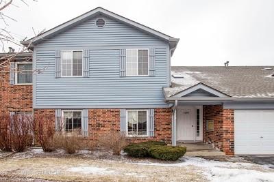 Schaumburg Condo/Townhouse For Sale: 1455 Fairlane Drive #6