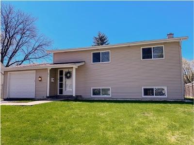 Buffalo Grove Single Family Home For Sale: 691 Saint Marys Parkway