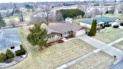 Orland Park Single Family Home For Sale: 13718 86th Avenue