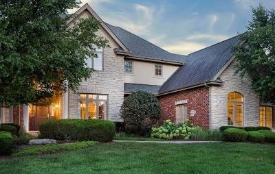 Lemont Single Family Home For Sale: 96 Rose Court