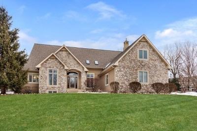 Lake Zurich Single Family Home For Sale: 24155 North Sacomano Lane
