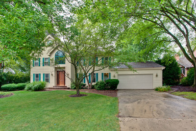 Lake Forest Single Family Home For Sale: 1030 Breckenridge Avenue