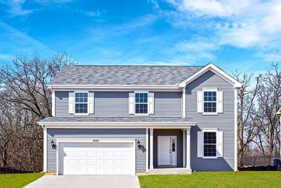 Island Lake Single Family Home For Sale: 2025 Foxridge Drive