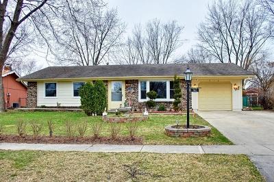 Schaumburg Single Family Home For Sale: 512 Slingerland Drive