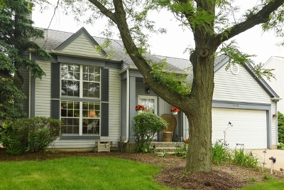 Wheeling Single Family Home For Sale: 1330 South Highgoal Drive