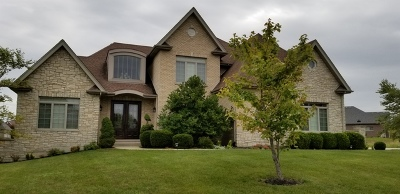 Homer Glen Single Family Home For Sale: 15663 Jeanne Lane