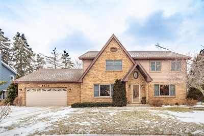 Palatine Single Family Home For Sale: 2303 Mallory Court