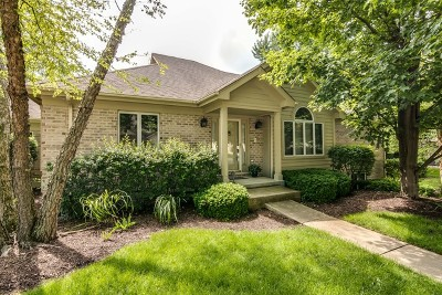 Downers Grove Condo/Townhouse For Sale: 2216 Durand Drive