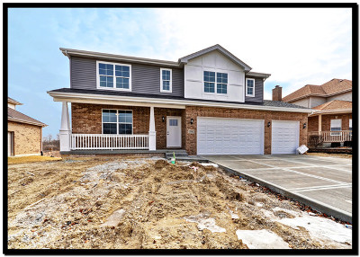 Lockport Single Family Home For Sale: 15903 Aster Drive