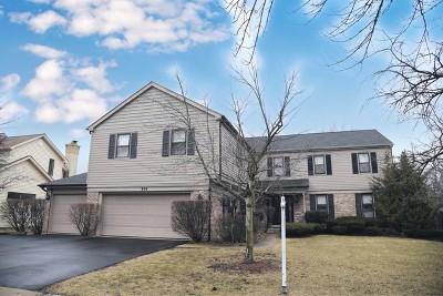 Arlington Heights Single Family Home For Sale: 806 West Kingsley Drive