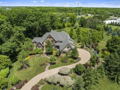 De Kalb, Dekalb, Maple Park, Sycamore, Elburn, Geneva, Gilberts, Hampshire, St. Charles Single Family Home For Sale: 4n867 Prairie Woods Court