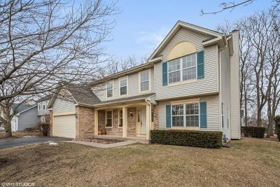 Single Family Home For Sale: 175 Meadowview Lane