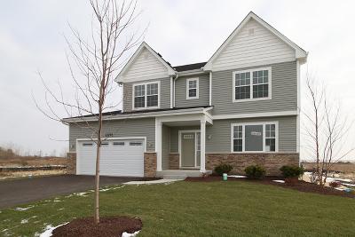 Plainfield Single Family Home For Sale: 13721 Sanibel Street
