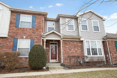 Tinley Park Condo/Townhouse For Sale: 18584 West Point Drive