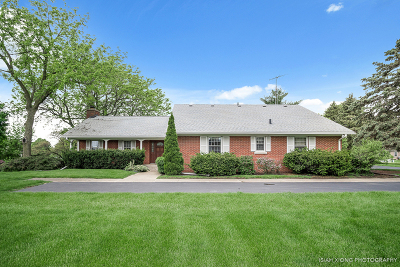 North Aurora Single Family Home For Sale: 940 North Deerpath Road