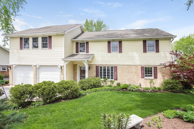 Mount Prospect Single Family Home For Sale: 612 West Bob O Link Road