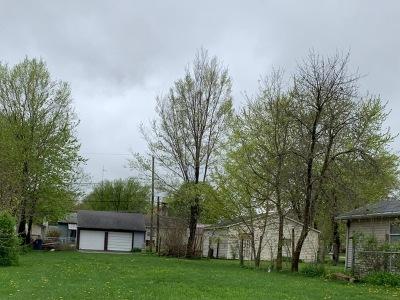 Bradley Residential Lots & Land For Sale: 179 North La Salle Avenue