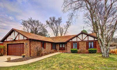 Aurora Single Family Home For Sale: 250 Lra Drive
