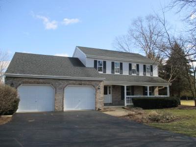 Elburn Single Family Home For Sale: 2n053 Dorsey Court