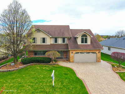 Naperville Single Family Home For Sale: 1600 Pathway Drive