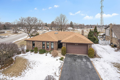 Palatine Single Family Home For Sale: 1129 East Carpenter Drive