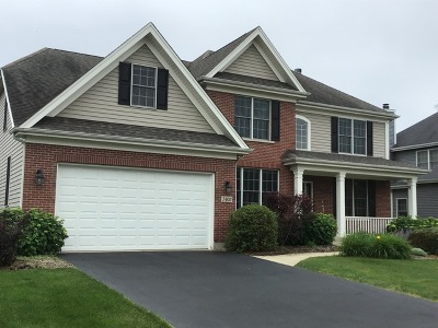 Elburn Single Family Home For Sale: 1403 Seaton Street
