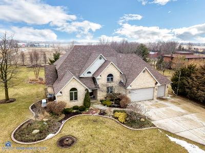 Frankfort Single Family Home For Sale: 8905 West Stuenkel Road