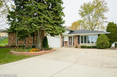 Palos Hills Single Family Home For Sale: 8520 West Interlochen Court