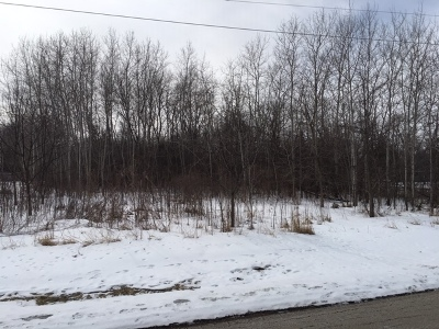 Crystal Lake Residential Lots & Land For Sale: 141 Beech Avenue