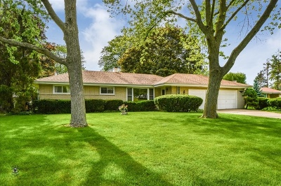 Downers Grove Single Family Home For Sale: 4202 Seeley Avenue