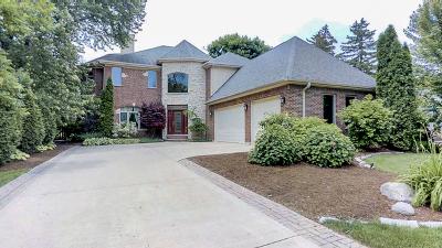 Northfield Single Family Home For Sale: 554 Earl Drive