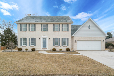 New Lenox Single Family Home For Sale: 909 White Lane