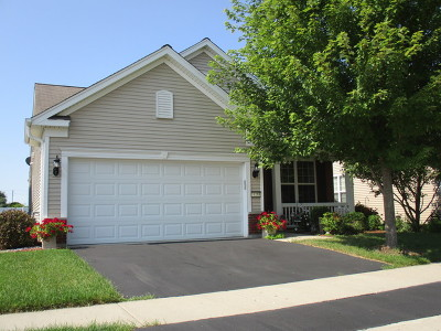 Huntley Single Family Home For Sale: 13255 Meadowlark Lane