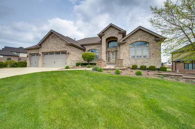 Frankfort Single Family Home For Sale: 20085 Waterview Trail