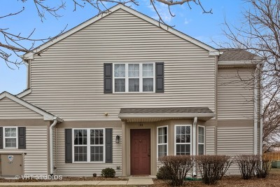 Naperville Condo/Townhouse Re-Activated: 2603 Sheehan Court #101