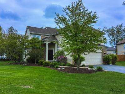 Bolingbrook Single Family Home For Sale: 160 Lindsey Lane