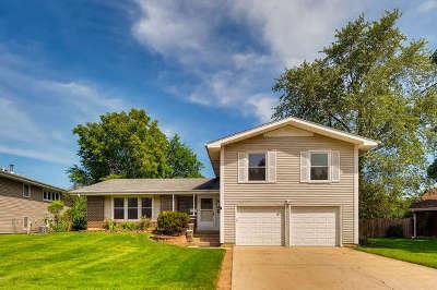 Hoffman Estates Single Family Home For Sale: 1460 Caldwell Lane